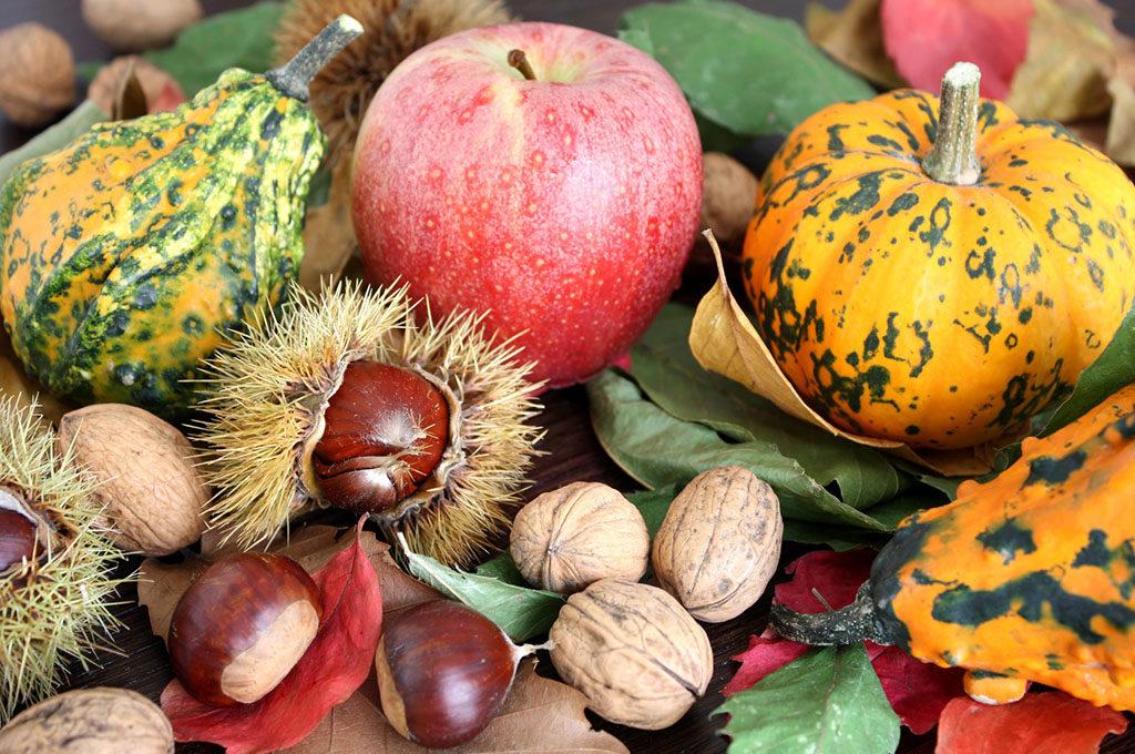 Frutta verdura e cibi tipici di ottobre made rural - Disegni di castagne ...
